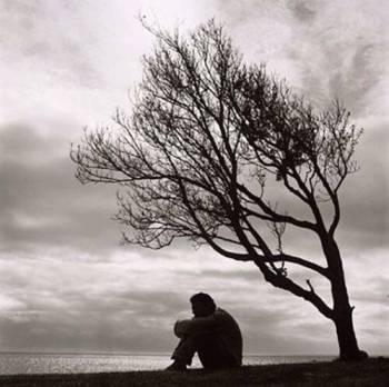 A depressed Terp near Greenbelt Lake.